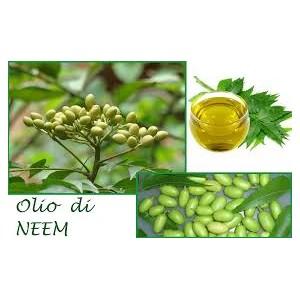Olio Essenziale di Neem 10 ml